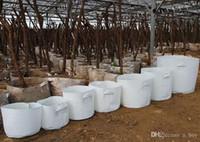 ingrosso pot di fiore classico-10 Size Opzione tessuto non tessuto Riutilizzabile Soft-Sided altamente traspirante Grow Pots Planting Bag con manici Price Cheap Large Flower Planter