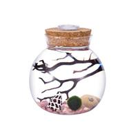Wholesale cork kit resale online - 4 quot LED Aquarium Kit Round Glass Jar with Cork Rhodonite Gravel Living Moss Ball and Shells