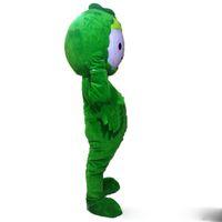 mascote real venda por atacado-2019 Hot sale Green repolho trajes da mascote vestido extravagante foto Real Frete Grátis