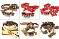 ingrosso tag per i prodotti-Pet Cat Dog Safety Traction Guinzaglio per animali domestici Cane di piccola taglia Tag collare Guinzaglio Set Stella di alta qualità Accessorio prodotto