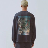 camisolas florais venda por atacado-19FW FOG Fear of God Essentials floral da foto Impresso Long Sleeve moleton Crewneck T-shirt Camisola Rua Hoodies T HFYMWY266