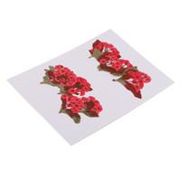 ingrosso fiori secchi rossi-10 pezzi naturali veri fiori rossi pressati fiori secchi per l'artigianato fai-da-te creazione di gioielli ciondoli pendenti