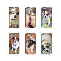 jack dogs venda por atacado-Eu amo meu jack russell terrier dog puppy hard phone case capa para apple iphone x xs xs max 4 4s 5 5s 5c se 6 6 s 7 8 além de ipod touch 4 5 6