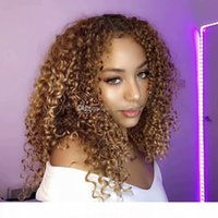 Wholesale curly afro blonde human hair for sale - Group buy 180 Density Afro Kinky Curly Blonde Human Hair Silk Top Full Lace Front Wigs For Black Women Natural Hairline
