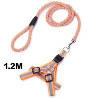 Wholesale red dog collar light online - Nylon Dog LED Light Harness Pet Blue Black Green Orange Red Collar Harness Casual Vest Pulling Rope