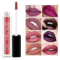 lápiz labial rojo vampiro al por mayor-1 Unids Sexy Vampire Lipstick Matte Velvet Lipstick Impermeable 12 Colores Sexy Pigmentos Rojos Maquillaje Lápices Labiales Mate Labios de Belleza