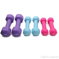 Wholesale new dumbbells resale online - Body Slimming Women Fitness Dumbbells pair Workout Weights Gym Equipment Musculation Non Slip Keep Healthy Dumbbell New hz ZZ