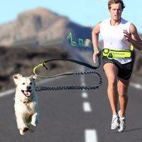 nylon kette hundehalsband großhandel-Wasserdichte Multifunktionstaschen Sport Laufen Joggen Hund führt Leine Welpe Zugseil Kette Halsbänder Geschirre Heimtierbedarf