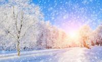 живопись пейзажного фона оптовых-красивые пейзажи обои зима красивая снежная сцена 3D телевизор фон отделка стен живопись