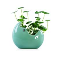 ingrosso vasi da fiori di pesce-2018 Nuovo vaso di fiori in ceramica Vaso a sfera Terrario Parete Fish Tank Aquarium Container Homw Decor