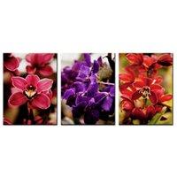 ingrosso illustrazione di tela di canapa del fiore viola-3 Pannelli Tela Pittura Red e Purple Orchid Flower Picture Stampe Opere d'arte Moderna Wall Art per la casa Living Room Decor allungato incorniciato