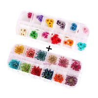 dried flowers supplies оптовых-60 Starry plus 60 five flower flower three-dimensional applique 3d nail stickers nail supplies dried flowers2 x 12 color (Star