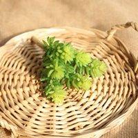 ingrosso arrangiamenti artificiali artificiali-1pcs artificiale Piante Succulente deserto erba artificiale paesaggio vegetale Fiore falso Disposizione casa Garden Decor