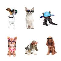 ingrosso adesivi 3d vivaisti-Fathead Dogs 3D Stickers murali in PVC rimovibili animali creativi Wall Sticker murales per la camera dei bambini e Nursery Decor decalcomanie fai da te per i bambini