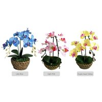 Wholesale blue plastic wedding flowers resale online - Artificial Flowers Simulation Phalaenopsis Potted Dried Flower Plastic Bonsai Set Home Green Plant Decoration