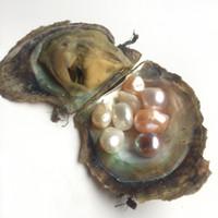 akoya perla 12mm al por mayor-JNMM Akoya Oyster con 8 Granos Natural Multicolor 10-12mm Paquete de vacío de perlas barrocas de alta calidad Regalo de cumpleaños