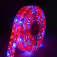 smd büyümek ışıklar toptan satış-5 M LED Fito Lambaları Tam Spektrumlu Şerit LED Işık 300 LED'ler 5050 Çip LED Fitolampy Sera Hidroponik bitki Için Işıkları Büyütün