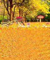 benutzerdefinierte computer gedruckt backdrops groihandel-Fotografie Kulissen Benutzerdefinierte Porträt Tuch Digital Printed Photo Requisiten Fotostudio Hintergrund AX-4422