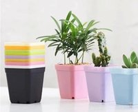 Wholesale green plastic plant pots for sale - Group buy Mini Flower Pots With Chassis Colorful Plastic Nursery Pots Flower Planter For Gerden Decoration Home Office Desk Planting DHL SN260