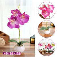 Wholesale blue orchid home decor resale online - Moth Orchid Fake Plant DIY Handmade Gift Decoration Simulation Flower Wedding Home Decor for Garden Artificial Flower Household