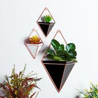 çiçekler için saksı vazolar toptan satış-Akrilik Saksı + Demir Bitki Sahipleri Set Kapalı Asma Dikim Geometrik Vazo Duvar Dekor Konteyner Succulents Bitki Saksılar