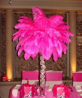 Wholesale cariel Prefect Natural hot pink Ostrich Feather inch Wedding Decoration wedding centerpiece party decor event supply z134b