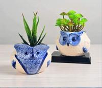 синие белые горшки для цветов оптовых-Набор от 2 синий белый Сова ручной керамические кашпо Сова цветочные горшки суккулентные растения кашпо ВАЗа