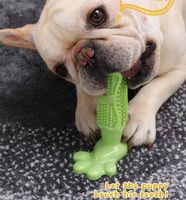 cepilla los dientes al por mayor-Perro creativo cepillo de dientes de juguete cepillo de cepillado mascota molar cepillo de dientes para perro cachorro diente cuidado de la salud dientes limpieza masticar cepillo de juguete