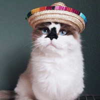 köpek kostüm çocuğu toptan satış-40 ADET Yeni Varış 2018 Renkli Pet Hasır Şapka Köpek Kedi Meksika Straw Sombrero Şapka Pet Ayarlanabilir Toka Kostüm Dropshipping AIJILE
