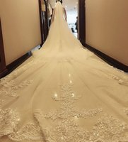 Cathedral Length Wedding Veils Custom Made Lace Applique Tulle Bridal Veil 5m Long women Accessories