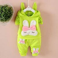 neugeborene fallen winter großhandel-Herbst-Babys kleidet Sätze Outfits Kapuzenjacke + Hose Trainingsanzug für Neugeborene Babyklage Kostüm Kleidung Sets