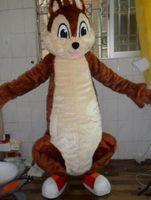 ingrosso costumi marrone code-Costume adulto della mascotte del carattere del costume della mascotte del vestito operato adulto dalla coda della grande coda marrone dello scoiattolo 2019 trasporto libero