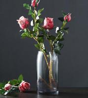 Wholesale decorative art vase for sale - Nordic creative light luxury glass vase hydroponic flowers gradient craft vase living room table flower arrangement decorative ornaments