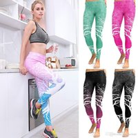 Wholesale s clothes tree for sale - Group buy Hirigin Women High Wasit Leggings Slim Workout Fitness Womens Clothing Tree Printed Jeggings Slim Outwear Women Outfits