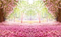 pisos de vinilo verde al por mayor-7x5FT Flores rosadas Camino del árbol Pétalos de jardín verdes Piso Luz del día Parque Fondo de fotos personalizado Estudio Telón de fondo Vinilo 220 cm x 150 cm
