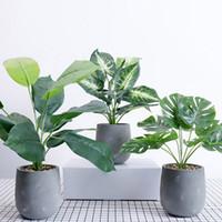 ingrosso piante in erba artificiale in vaso-Simulazione di stile minimalista nordico del fiore artificiale Pianta verde della tartaruga conservata in vaso lascia la decorazione domestica della pianta dell'erba del cactus