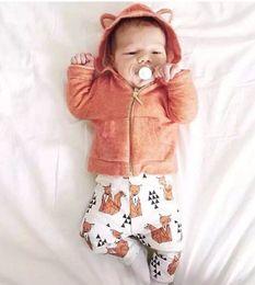 Wholesale Girls Warm Pants - Retail !GOOD NEWS ! Baby Boy Girl Sweatshirts & white printing orange fox pants suit! Autumn Warm baby clothings,children clothes suit.