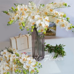 Wholesale White Wedding Butterfly Decorations - EURO style 6pcs lot Artificial Moth Orchid silk flower decorative Butterfly Orchid for Home and wedding party table decoration flower