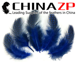Wholesale Cheap Costumes China - Gold Manufacturer China ZP Crafts Factory 500pcs lot Cheap Wholesale Dyed Royal Blue Guinea Polka Dot Feathers