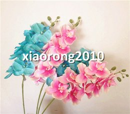 Wholesale Wholesale Lavender Silk Flowers - Silk Phalaenopsis 6 Colors Butterfly Moth Orchid 8 Flower heads Piece Orchids for Wedding Decorative Artificial Flowers