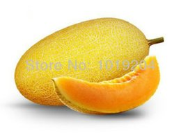Wholesale Melons Seeds - 30 PC xinjiang hami melon seeds, high nutritional value of fruit seeds, potted plants