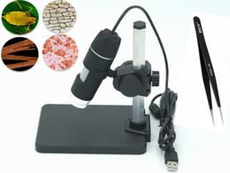 Wholesale Digital Usb Microscope Video Camera - Wholesale-New Portable USB Digital 50 - 1000 X 2.0 MP Microscope Endoscope Magnifier Camera 8 Led FREE SHIPPING