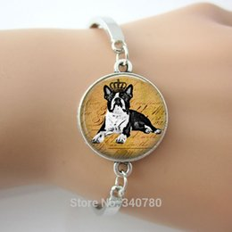 Wholesale Pet Designs Silvers - Boston Terrier Dog Pet picture Glass Dome pendant bangle 2016 New Design Faith Jewelry items 1 pc lot free shipping Hot Selling