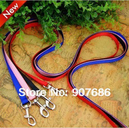 Wholesale Blue Dog Collars - Wholesale-New Pet Puppy Leash Harness Rope Dog Leash Training Lead Collar Dog Rope for Small Dogs Blue Black Pink RedV3402