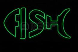 2019 sinais de luz busch Sinal de Néon de peixe Tubo De Vidro Real Bar Pub Loja de Publicidade de Negócios de Decoração Para Casa Arte Exibição de Presente de Metal Frame Tamanho 17''X14 ''