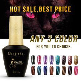 Wholesale Uv Gel Nail Care - Azure 3pcs lot 3D Nail UV Gel Polish UV LED Cat Eye Color gel Manicure Dark Cat Color 12ml Healthy and nail care Gel