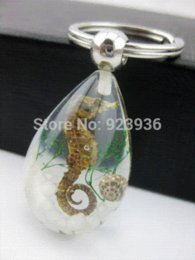 Wholesale Real Scorpion Keychain - free shipping wholesale 60 pcs real mix fashion insect design real spider&scorpion mix Xmas super drop keychain