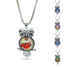 Wholesale Vintage Owl Glasses - Fashion Vintage Glass Cabochon Owl Pendant Necklace Women Antique Silver Chain Necklaces Classic Owl Animal Jewelry