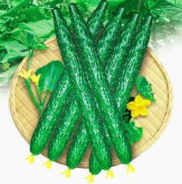 овощи садоводство Скидка Бесплатная доставка 1 упак. 200 огурец семена Cucumis Sativus Cuke семена, зеленый овощные семена садовые принадлежности