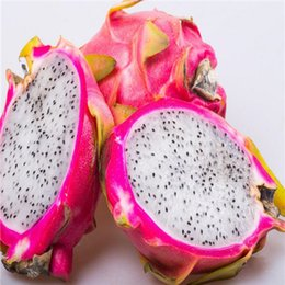 Wholesale Garden Dragons - home & garden New Home Garden Plant 100 Seeds White Purple Dragon Fruit Cactus Pitaya Seeds Free Shipping